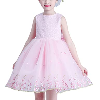 SOIXANTE Girls Lace Tulle Sleeveless Princess Embroidery Dresses Wedding Flower Girl Birthday Party Prom Dresses