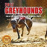 2017 Greyhounds Calendar- 12 x 12 Wall Calendar - 210 Free Reminder Stickers