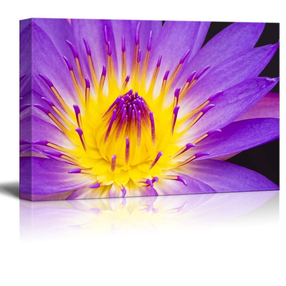 Beautiful Flower Floral Art Water Lily Wall Decor ation - Canvas Art ...
