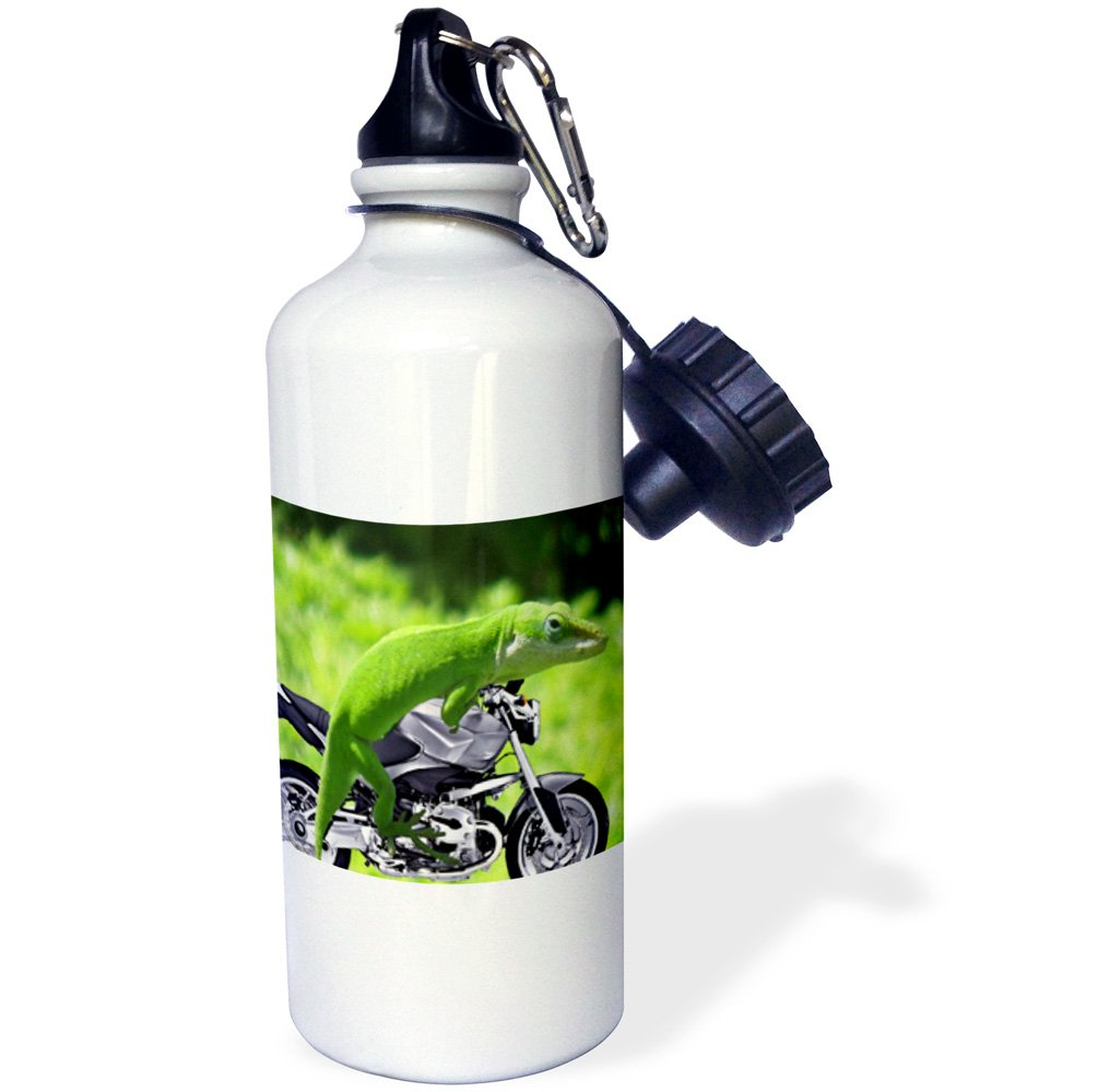 21 oz 3dRose wb/_21653/_1 Gecko Rider Sports Water Bottle White