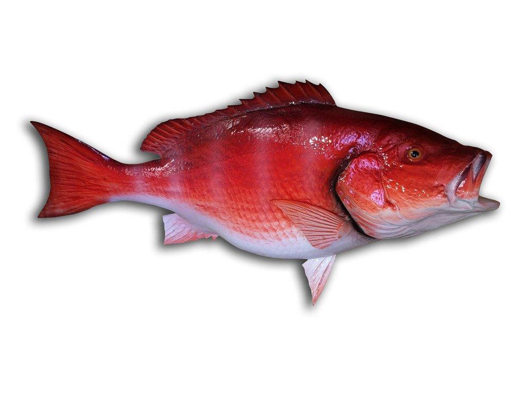 32'' Red Snapper Half Mount Fish Replica , Fishing Wall & Coastal Decor