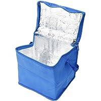Bolsa Térmica Quadrada Hawai Azul - 20x15 cm