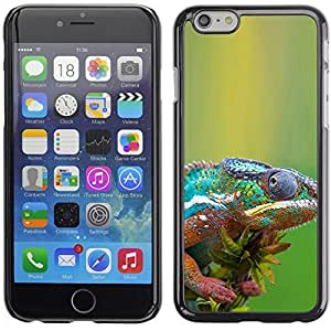 YOYO Slim PC / Aluminium Case Cover Armor Shell Portection //The Cool Chameleon //Apple Iphone 6 Plus 5.5