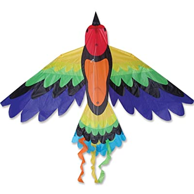Rainbow Bird Kite: Toys & Games