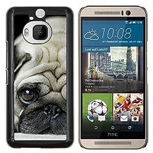 YiPhone /// Prima de resorte delgada de la cubierta del caso de Shell Armor - Pug Cachorro triste raza canina perro Tiny - HTC One M9Plus M9+ M9 Plus