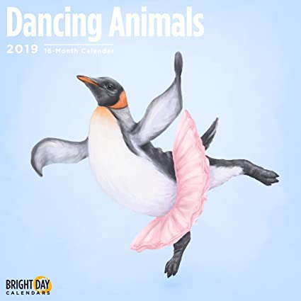 Dancing Animals 2019 Wall Calendar 12 x 12 Inches