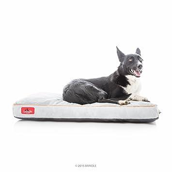 Amazon.com: BRINDLE Cama para perros de espuma ...