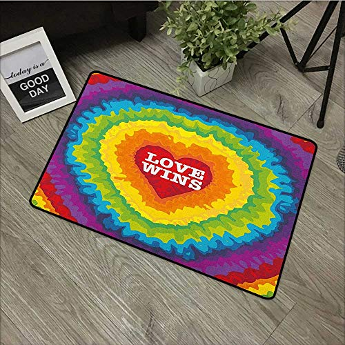 Sillgt Pride Pet Doormat Love Valentines Wins Celebration with Tie Dye and Rainbow Colors Happiness Vintage Easy Clean Rugs 16