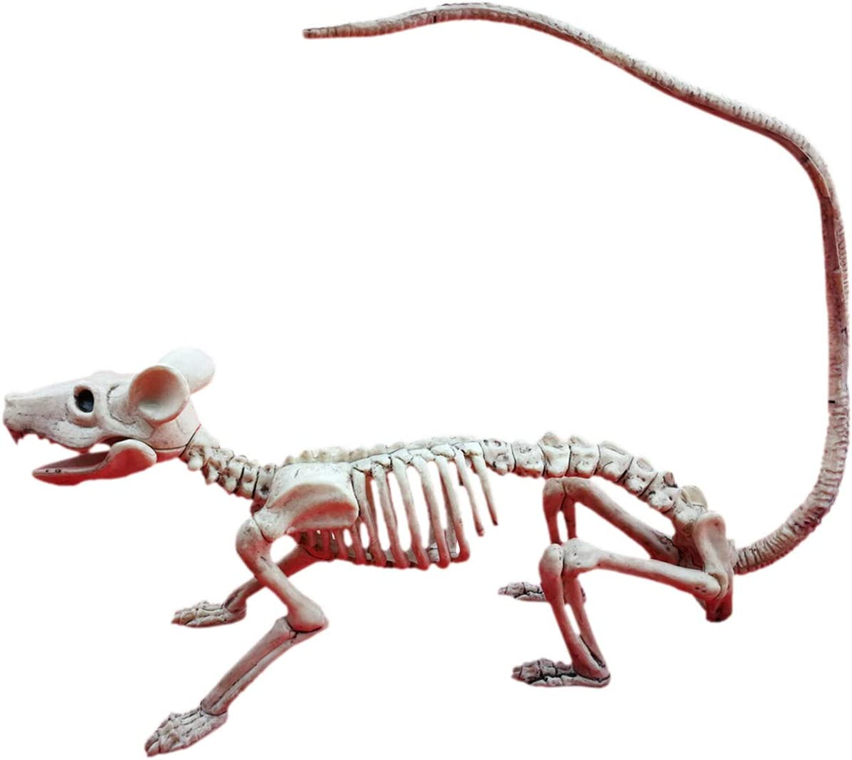 ShiyiUP Scary Skull Bone Party Human Skeleton Anatomical Model Halloween Decoration Height 38cm//15