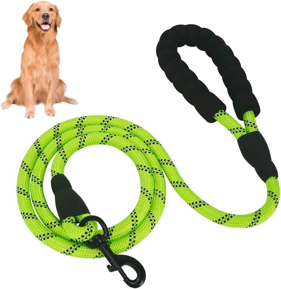 Eastlion Correa de Perro Nylon con Mango Acolchado Suave&Reflectantes,Correa Perro 1,5 m para Perros pequeños, medianos y Grandes(Verde)