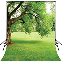 4X6ft Green Tree Photography Backdrop Forest Landscape lawn Backdrop D662