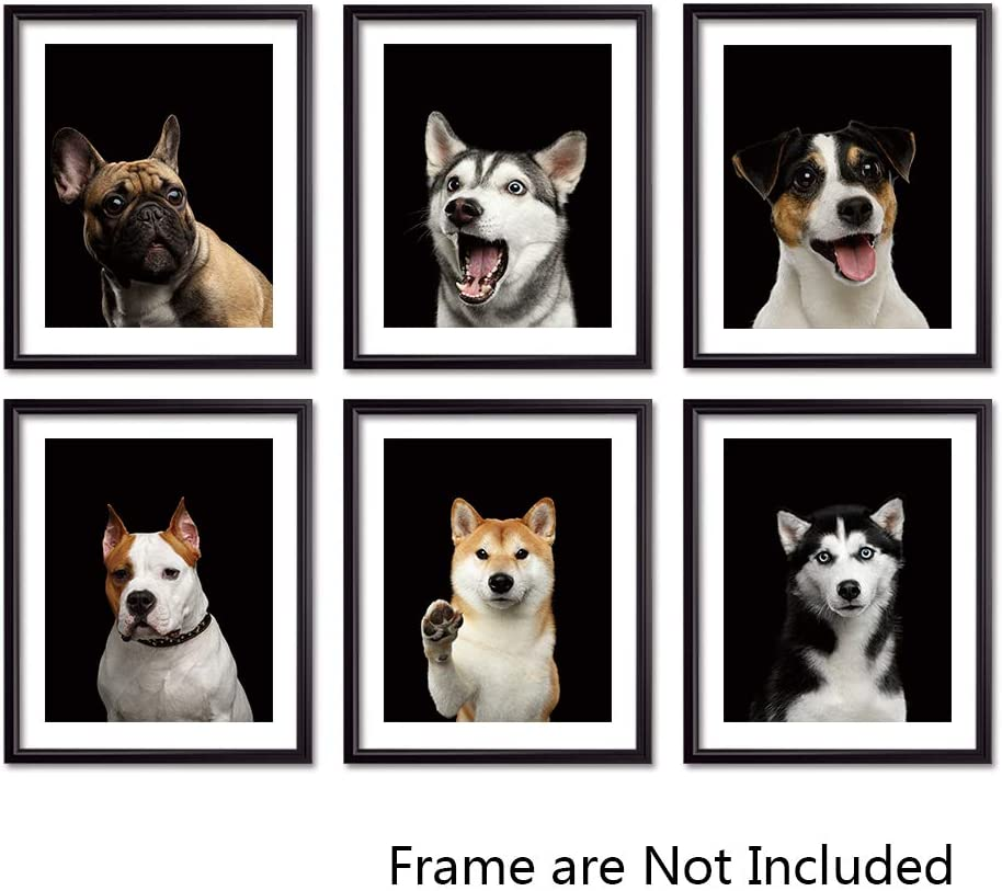 Sign Leader Unframed Canvas Pet Prints, Cute Dog Wall Art for Living Room, Modern Home Decor, Set of 6 pieces-8x10 inch (Dogs)