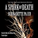 A Spark of Death: The First Professor Bradshaw Mystery Audiobook by Bernadette Pajer Narrated by Malcolm Hillgartner