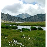 Home Comforts Peel-n-Stick Poster Lake Cloud Summer Landscape Mountain Nature Flora Poster 24X16 Adhesive Sticker Poster Print