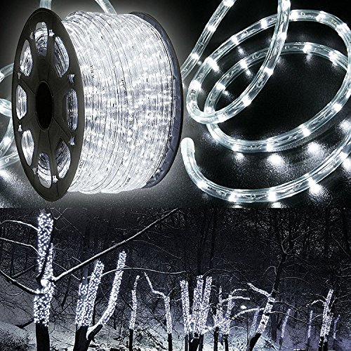 100 Feet Led Rope Light in US - 9