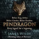 Pendragon: A Novel of the Dark Age Audiobook by James Wilde Narrated by David Shaw-Parker
