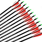 #10: Ruixunte Archery Recurve/Compound Bow 28