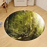 Gzhihine Custom round floor mat Nature Sunny Rainforest with Wood Bench in Olympic National Park Washington USA Photo Bedroom Living Room Dorm Green Yellow