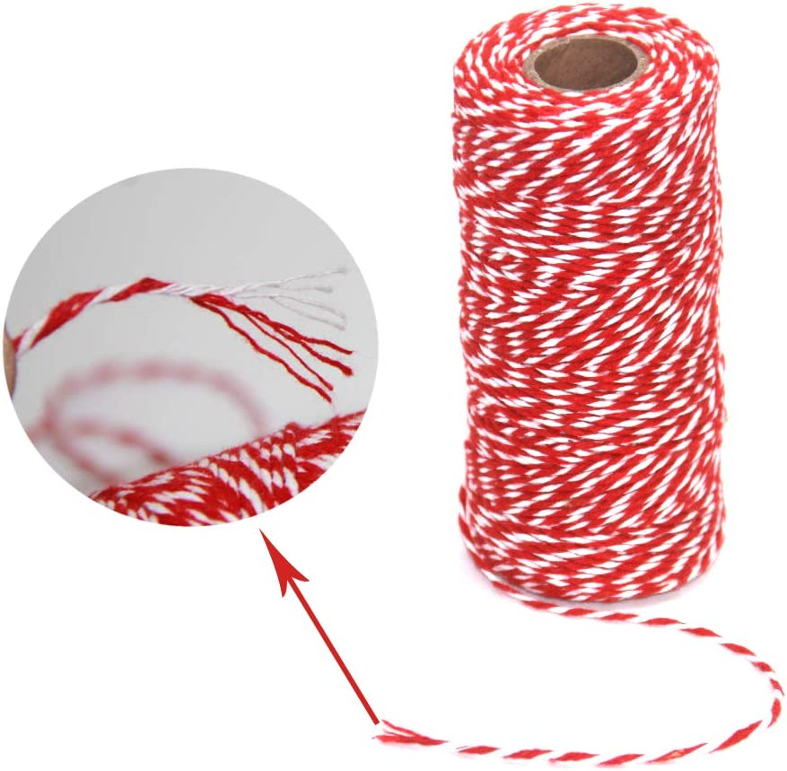 Gold Wire Combined Cotton Twine Cording for Christmas Baking 100M//328Feet Each Roll Ewparts 2 Roll Christmas Wrapping Twine DIY Arts Threading Decorations Gold/&White, 2MM