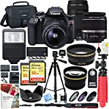 Canon T6 EOS Rebel DSLR Camera with EF-S 18-55mm f/3.5-5.6 IS II and EF 75-300mm f/4-5.6 III Lens and SanDisk Memory...