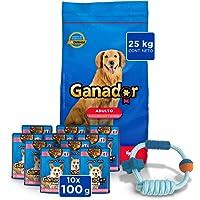 Alimento para perro Ganador 25kg + Alimento humedo Ganador + Regalo