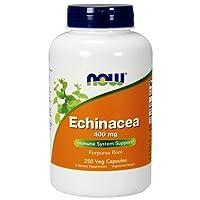Now Foods, Echinacea (Wurzel) 400mg, Immununterstützung, 250 vegetarische Kapseln