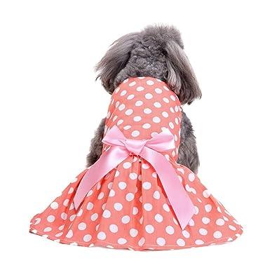 Ropa para Mascotas,Dragon868 Vestido de Lujo de Perro Rosa de Mascotas tutú Ropa de Boda Camisas: Amazon.es: Ropa y accesorios