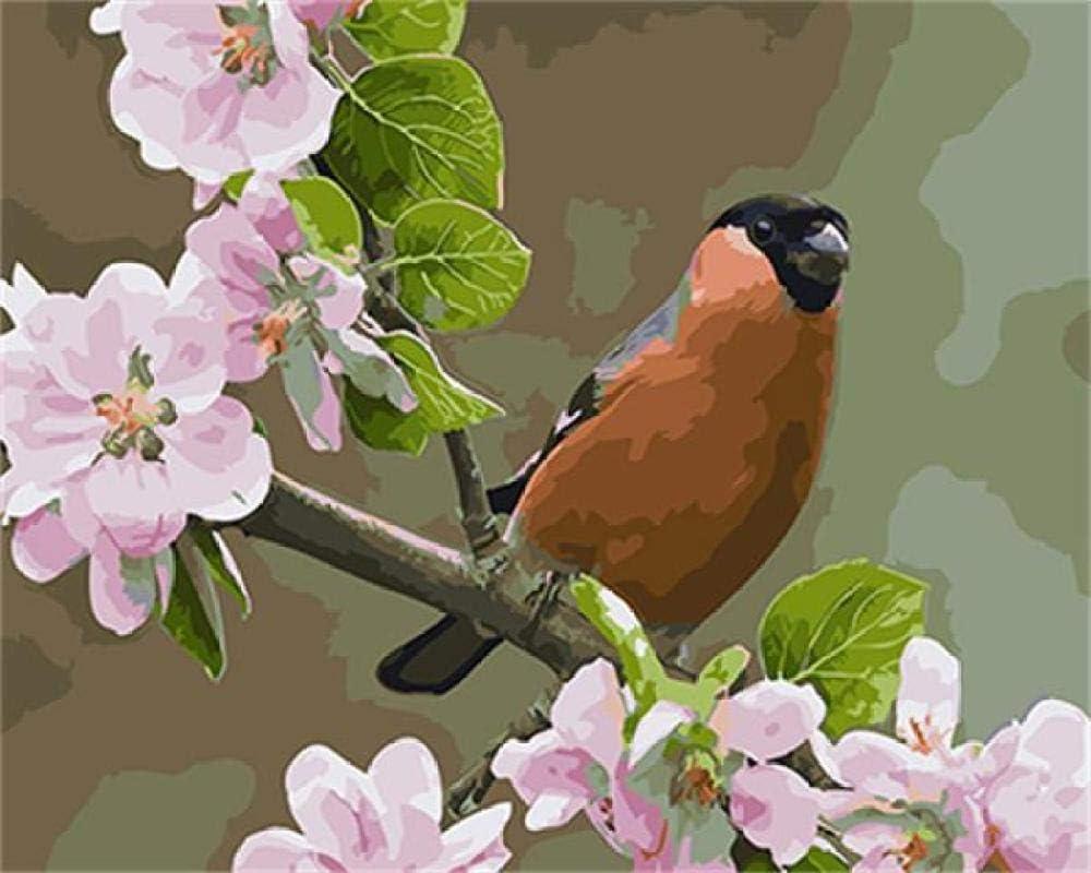 wekeke Pájaro y Flor DIY Pintura Digital para Adultos por números de colorante decoración del hogar para Sala de Estar Pared arte-40x50 cm sin Marco