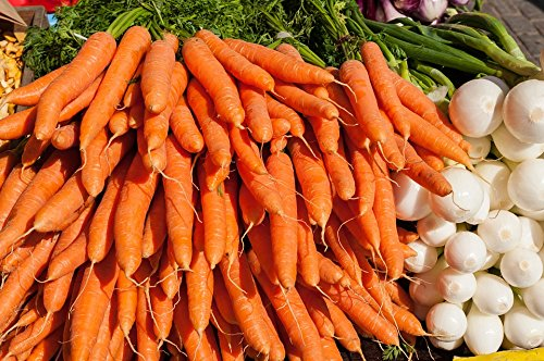 Nature Carrot (Home Comforts LAMINATED POSTER Nature Carrots Market Onions Vegetables Poster 24x16 Adhesive Decal)