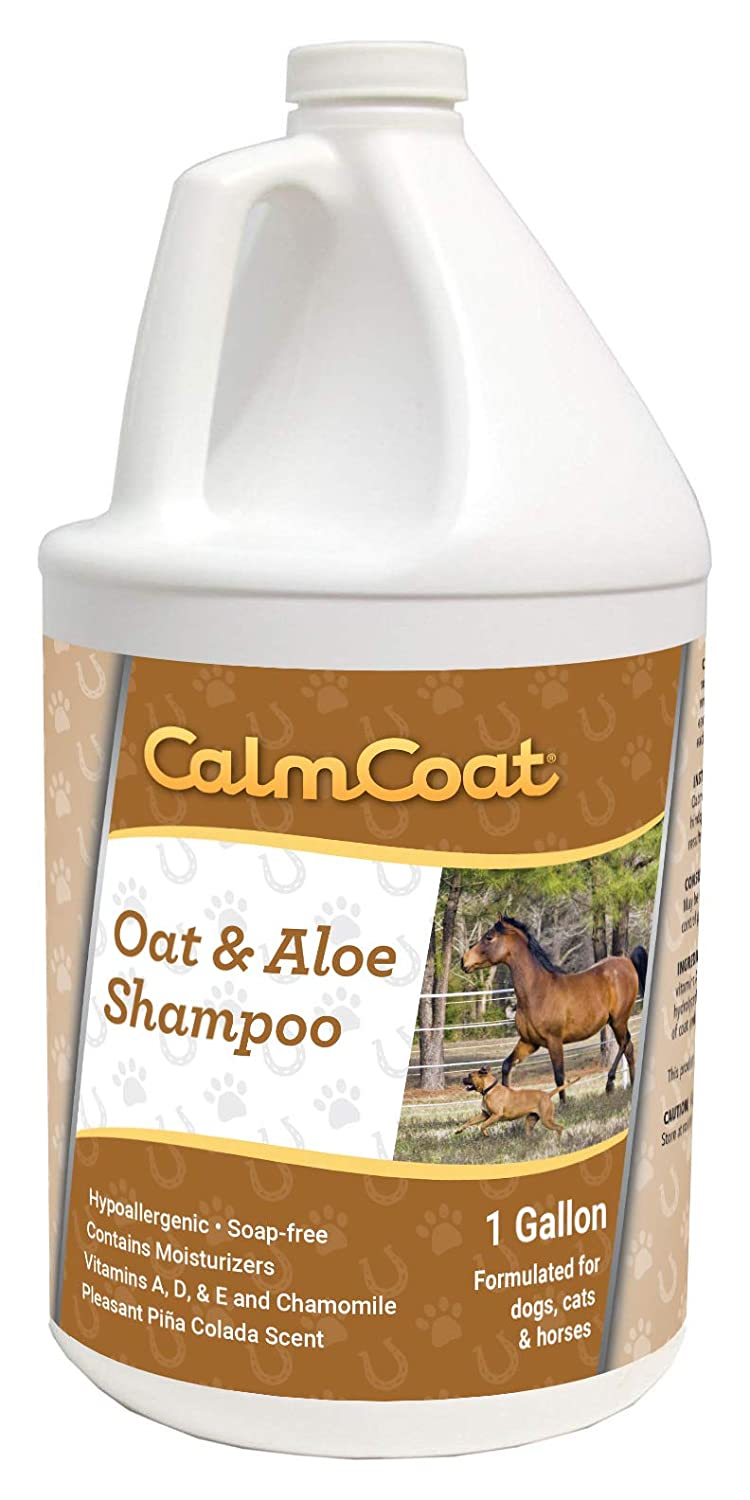 4. Calm Coat Oat & Aloe Shampoo - Best Scaly Skin Relief Shampoo for Dog with Itchy Skin