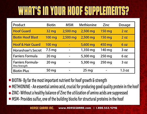 Horse Guard HOOF & HAIR GUARD EQUINE HOOF SUPPLEMENT AND EQUINE COAT SUPPLEMENT WITH AMINO ACIDS, BIOTIN, METHIONINE & SOY OIL, 10 lb by Horse Guard (Image #7)