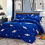 4pcs Bedding Set Duvet Cover Flat Sheet Pillow Case Twin Full Queen Aloe cotton Planet Designs (Full
