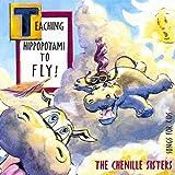 : Teaching Hippopotami to Fly