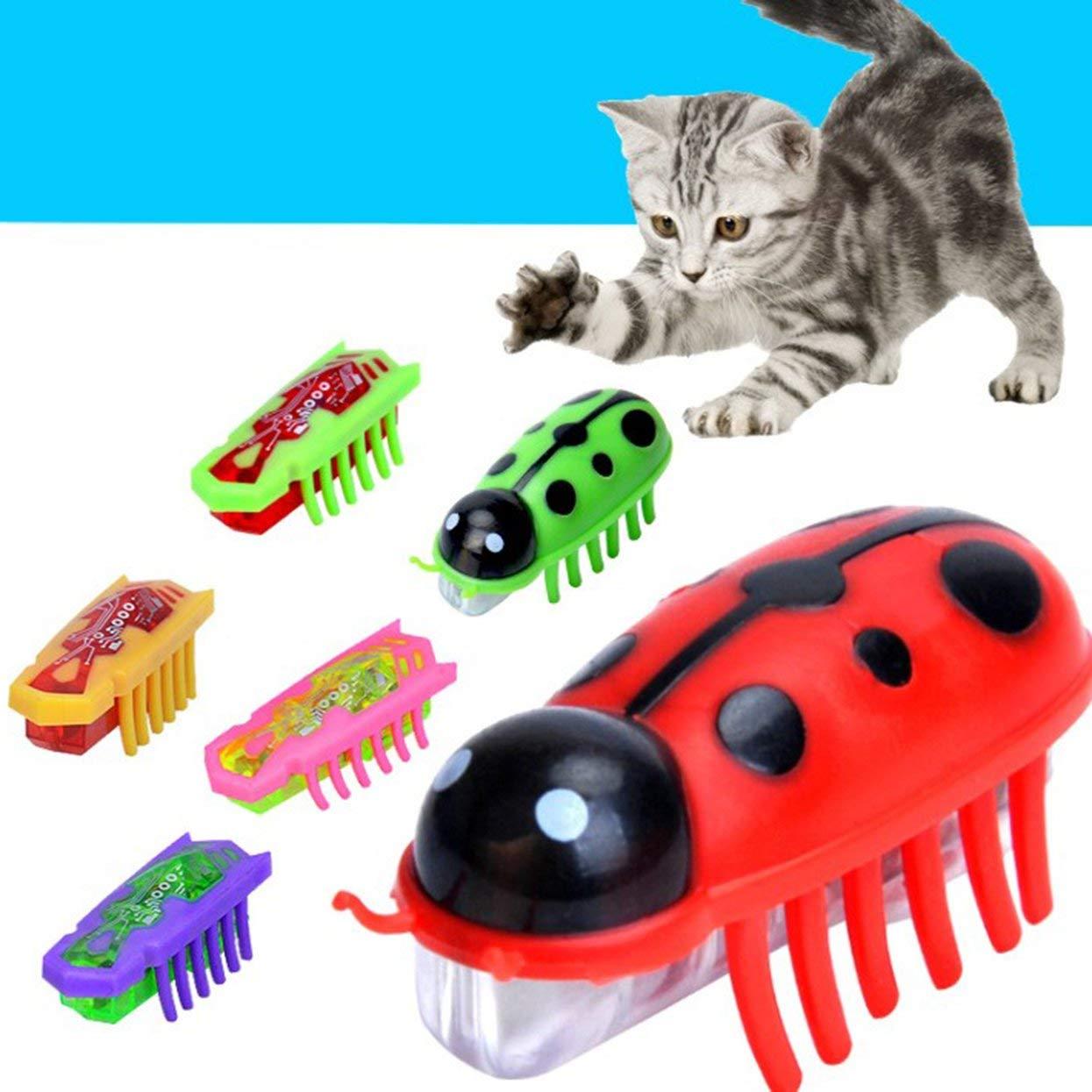 LoveOlvidoE Electrónica con Pilas Nano Insectos Mini Insecto mecánico Gato Interactivo Traning Jugando Juguetes Mascotas Suministros Herramienta: Amazon.es: ...