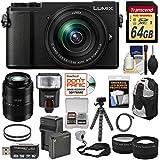 Panasonic Lumix DC-GX9 4K Wi-Fi Digital Camera & 12-60mm (Black) + 45-200mm Lens + 64GB Card + Battery + Backpack + Tripod + Flash + Tele & Wide Lens Kit