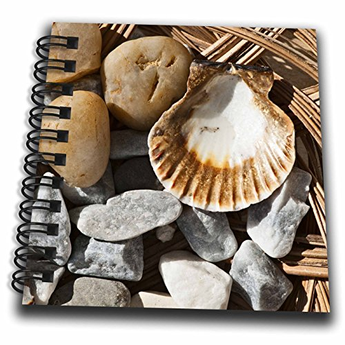 3dRose Alexis Photography - Objects - Grey and brown pebbles and a sea shell on a wicker plate - Mini Notepad 4 x 4 inch (db_273238_3)