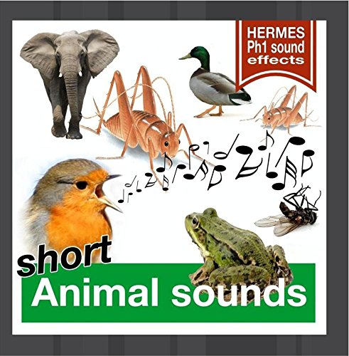 Price comparison product image Animal Sounds