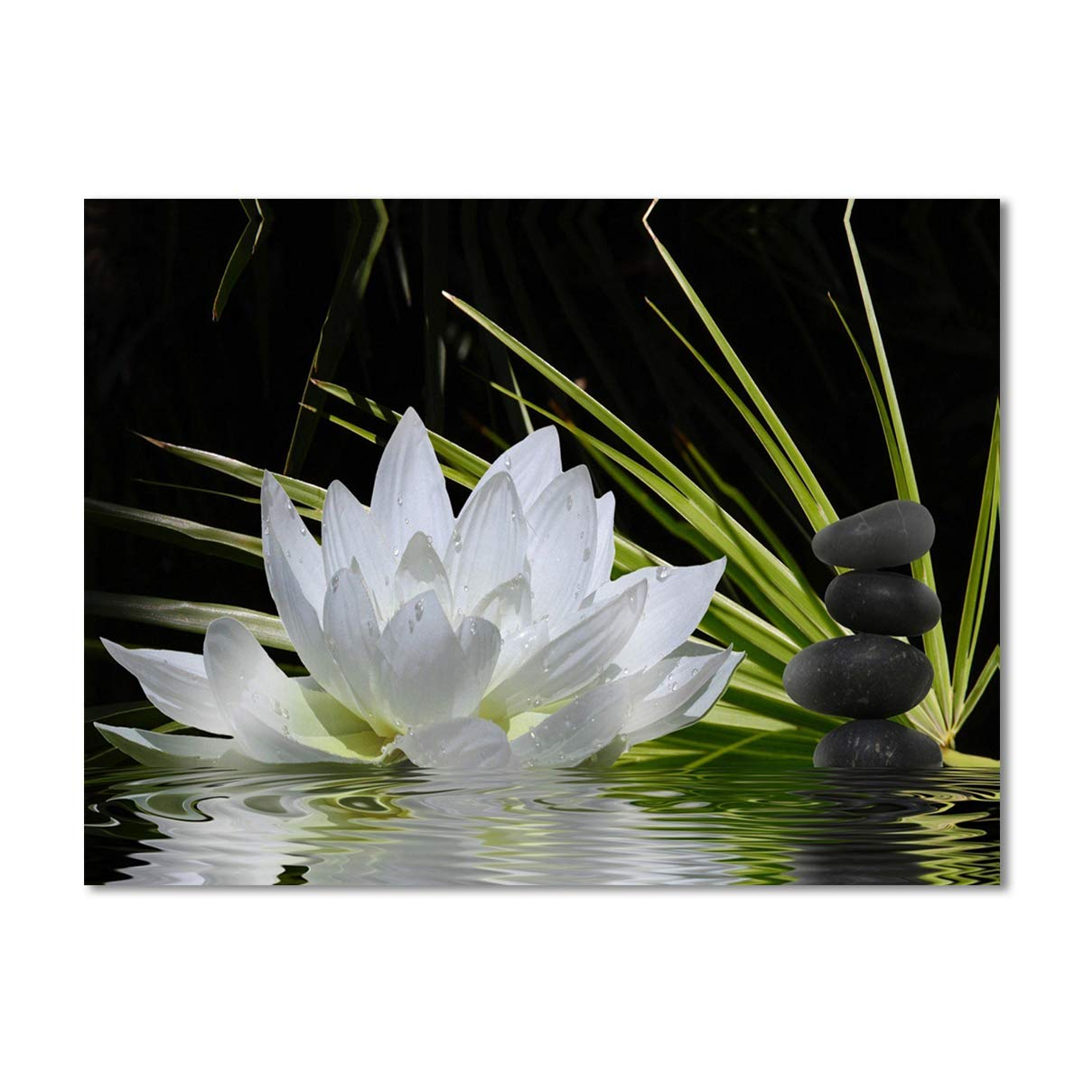 Spirit Up Art Modern Giclee Prints Framed Flower Artwork White Lotus and Black Zen Stones Picture Print to Photo Printed Paintings on Canvas Wall Art Decor for Home Office Decorations 12 by 16 inch