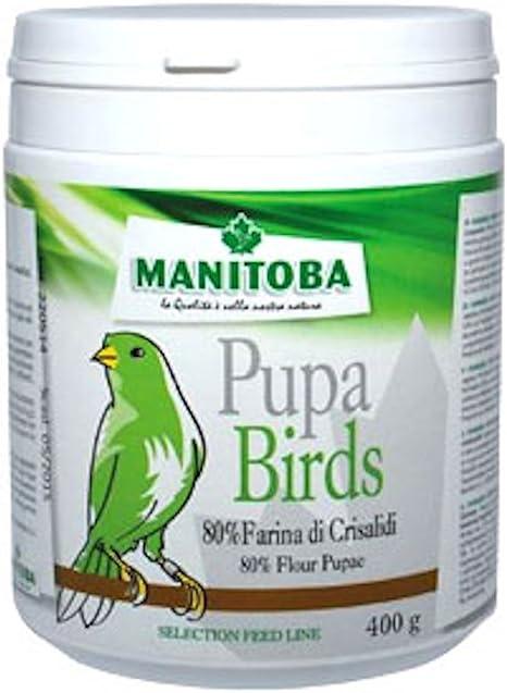 mercasystems.com Manitoba Pupe pájaros 400 g (Extra proteína ...