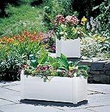 Terrazza Trough Planter, White