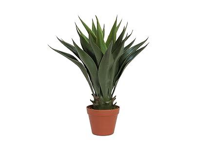 Palma Yucca Artificiale William Verde 50cm Tronchetto Della