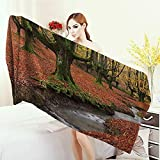Anhounine 3D Printed Microfiber Beach Towel Farm House Decor Collection Flowing Stream on Colorful Autumn Forest Leaves Gorbea Natural Park Spain Picture Thick Towels 63''x31.5'' Peru Salmon