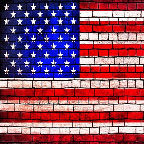 CSFOTO 8x8ft Background For American Flag Painted On Brick Wall Photography Backdrop USA Holiday Independence Day Celebrate Party Decor 4th July Photo Studio Props Children Portrait Vinyl (Halloween Alcoholic Drinks Easy)