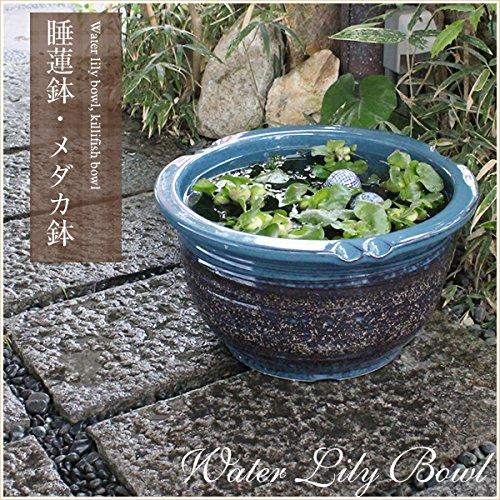信楽焼 15号ナマコ色 すいれん鉢 メダカ鉢 睡蓮鉢