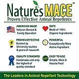 Nature's Mace Rabbit Repellent 30lb Granular/Treats
