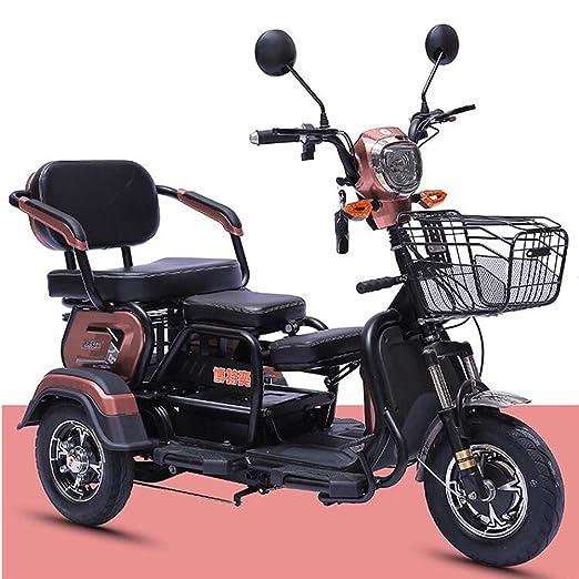 WLY Scooter eléctrico de Tres Ruedas Viejo Ocio Motocicleta ...