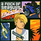 A Flock of Seagulls: I Ran: the Best of (Audio CD)
