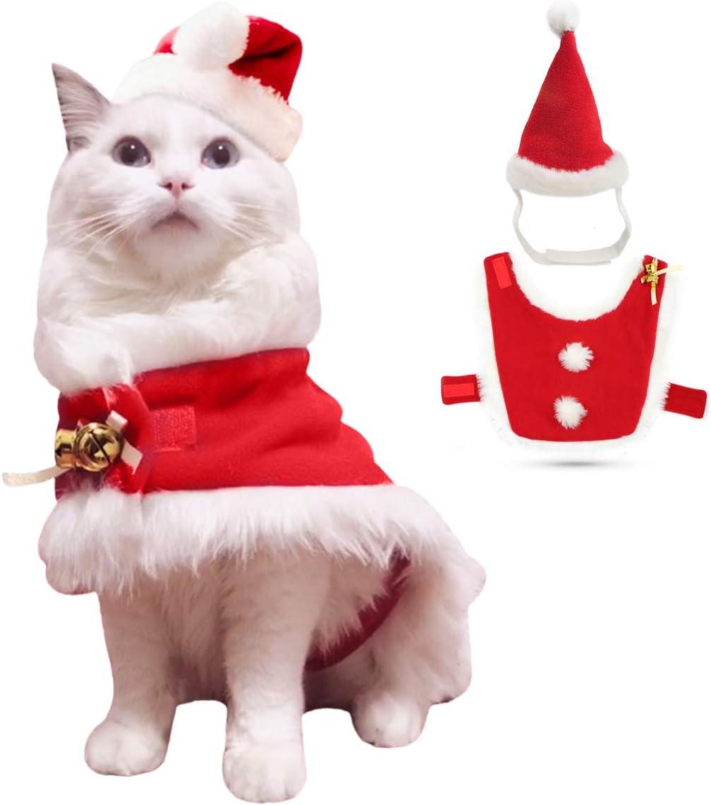 Present Christmas Cat bauble