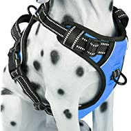 PoyPet No Pull Dog Harness, Reflective Vest Harness with Front & Back 2 Leash Attachments 2 Buckles and Easy Control Handle for Small Medium Large Dog (Blue, Large)