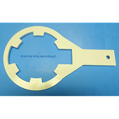 itonotry Hayward Chlorinator CL200 & CL220 Lid Wrench Opener Tool DG3-1, Product_by: positivepoolwholesale, ket16230649887216 : Garden & Outdoor